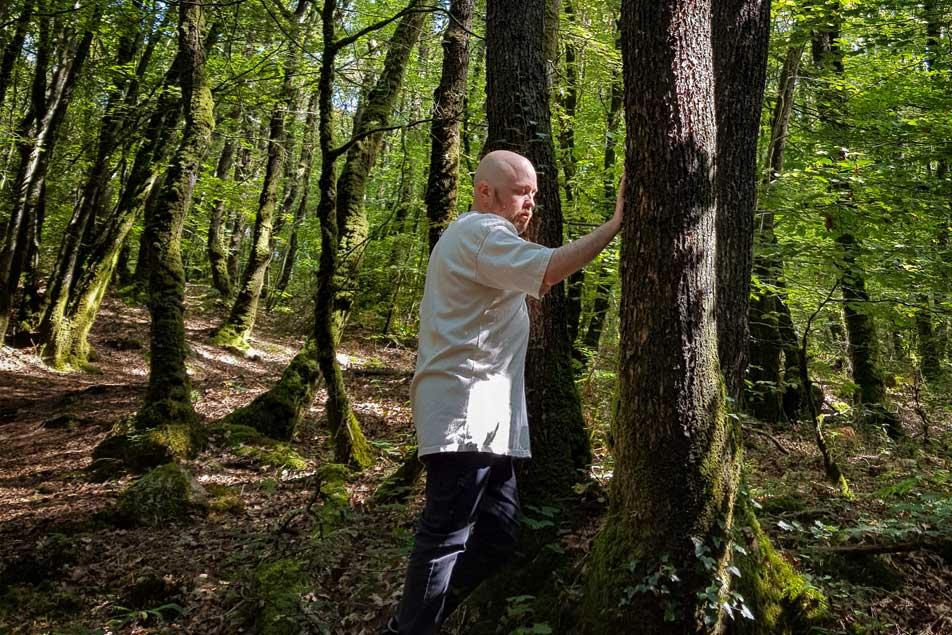 Un druide pratique la sylavreliance (sylvothérapie) et touche un arbre en méditant, respirant.
