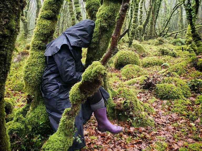 On voit une personne contre un arbre au cœur d'une magnifique forêt en séance de sylvareliance.